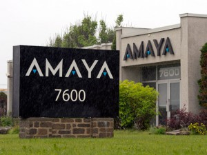 amaya_main-office