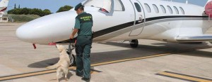high-stakes-poker-player-banged-up-in-ibiza-on-drug-smuggling-charges