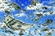 Акции WPT после заявления о снижении прибыли значительно упали в цене